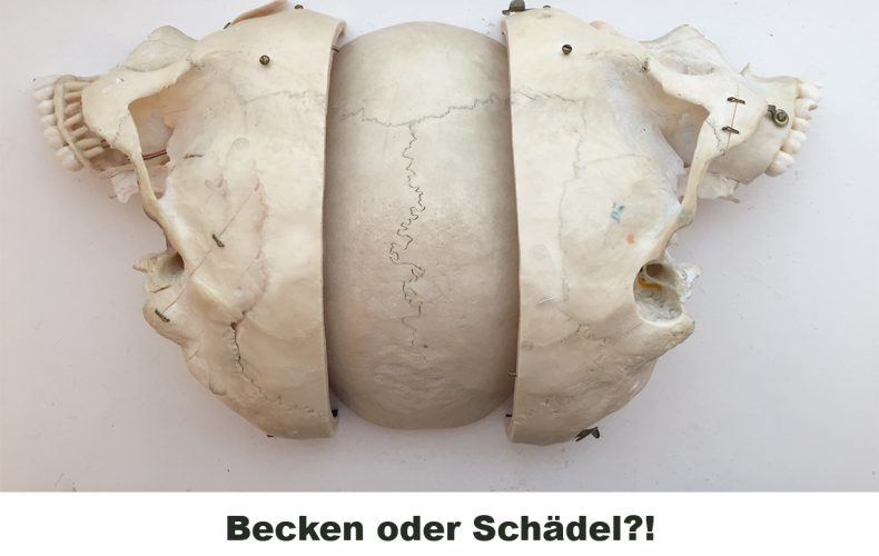 Becken oder Schädel?! Und was ist eigentlich Cranio sacrale Osteopathie